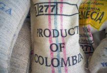 kava kolumbia